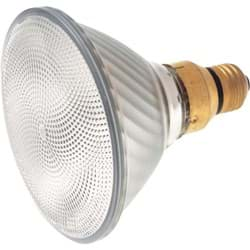 Picture of Satco PAR38 Medium Skirted Base Halogen Floodlight Light Bulb