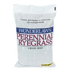 Picture of Wonderlawn Perennial Ryegrass Grass Seed