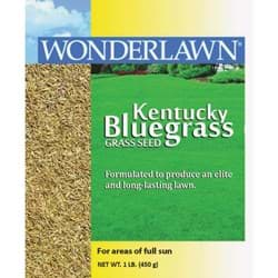 Picture of Wonderlawn Kentucky Bluegrass Grass Seed
