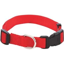 Picture of Westminster Pet Ruffin' it Adjustable Nylon Dog Collar